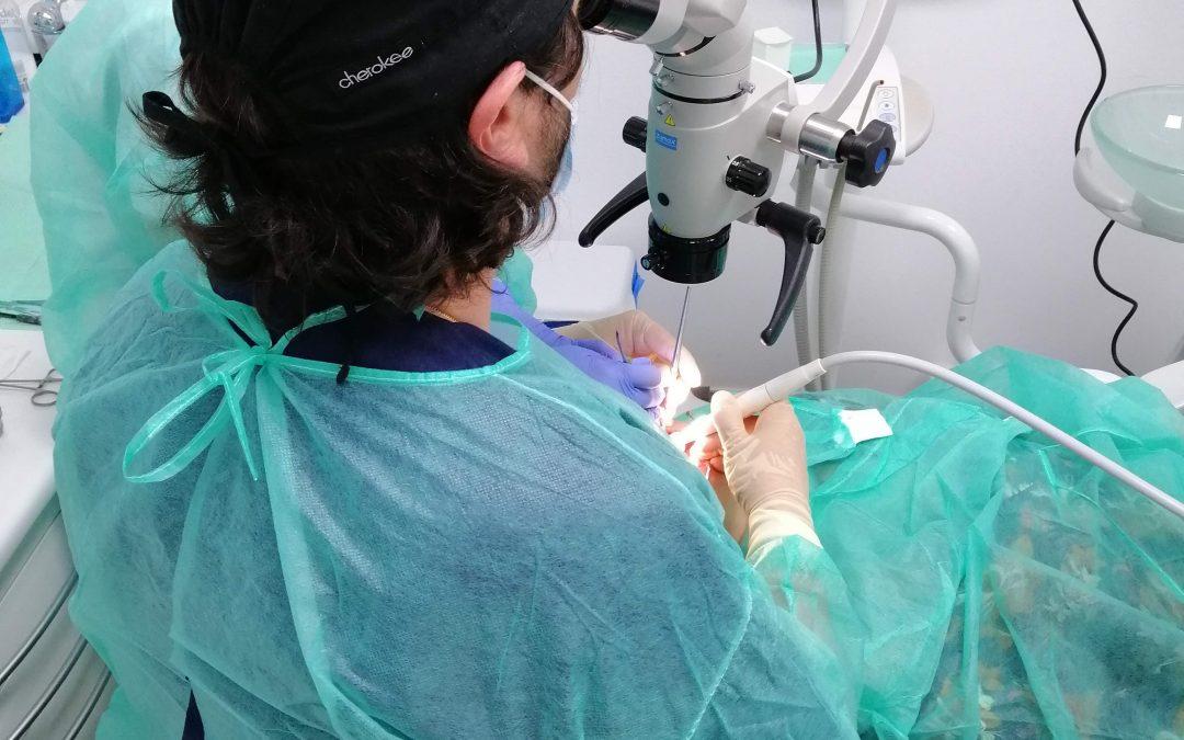 Microscopio en odontología: ¿Cómo se usa y para qué sirve?